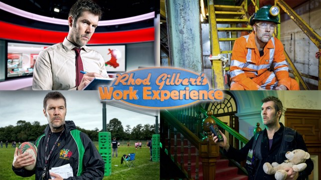 Work Experience montage image
